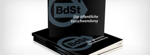 Schwarzbuch Die öffentliche Verschwendung: bestellen - Bild anklicken!