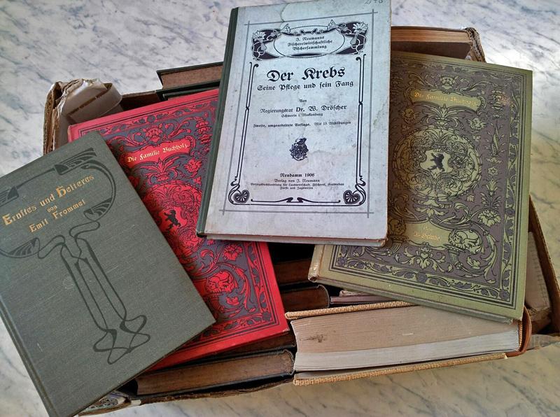Bücher Richtig Aufbewahren Buechersammler